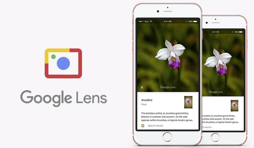 Google Lens For iOS Users Is Now Available With Latest Google Photos Update