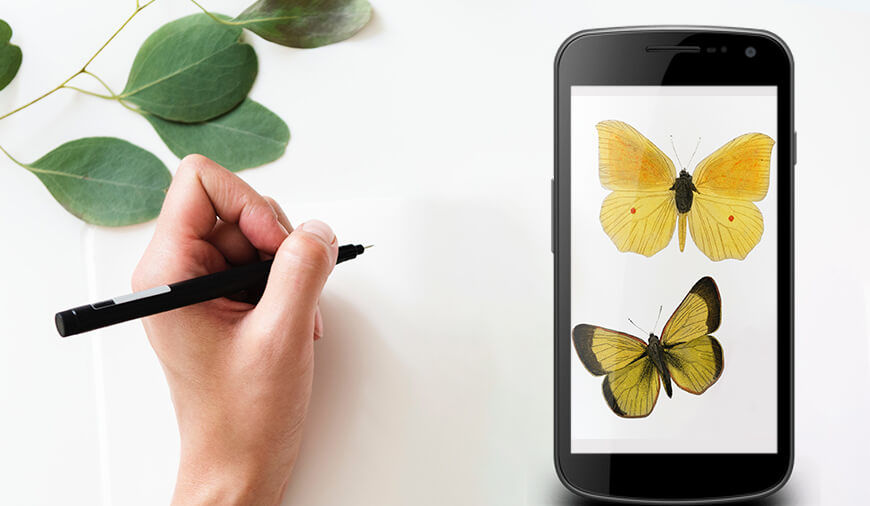 Best Creative Drawing Apps