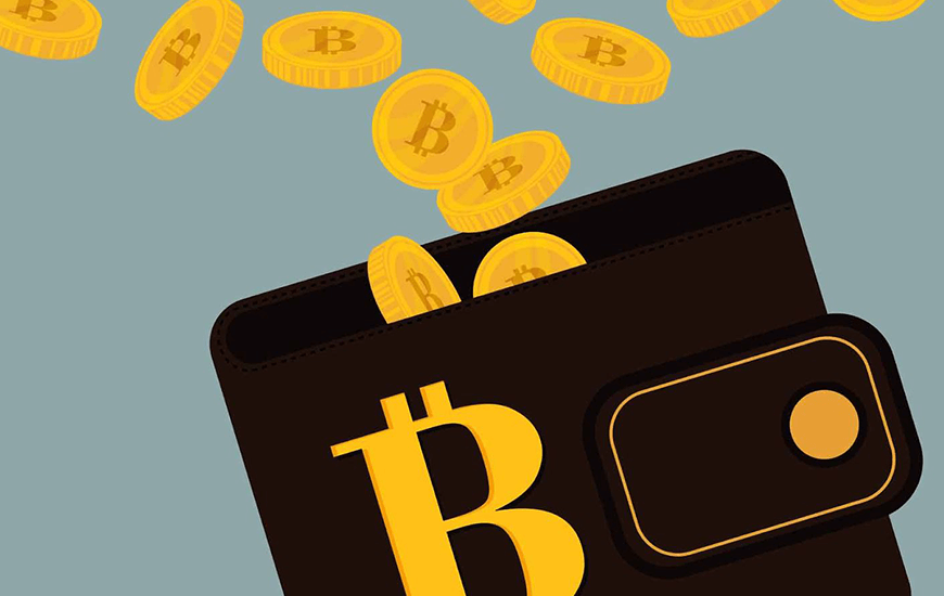 7 Best Bitcoin Wallets 2018 To Store Your Cryptocurrency