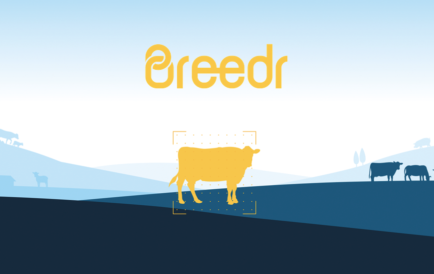 Livestock App Breedr Secures £2.2M In Funding
